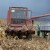 Suša i veća potražnja na tržištu povećale cijene kukuruza i pšenice
