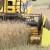 I ove godine preko 5 t/ha s KWS hibridima uljane repice!