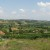 Poljoprivredno zemljište u Srbiji čak dva puta skuplje nego u regionu