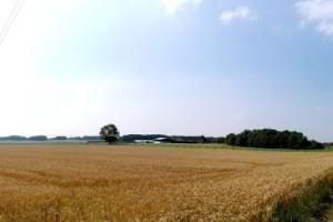 Izmjene i dopune Pravilnika o evidenciji uporabe poljoprivrednog zemljišta