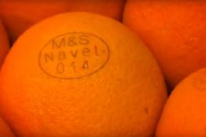 Nizozemska kompanija eko plodove označava laserski