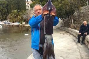 Šetao uz more pa ulovio lignjuna teškog 6,4 kg!