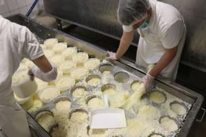 Šemsudin Dedić: Pomoć mljekarima ne treba svesti samo na poticaje, već modernizaciju i razvoj