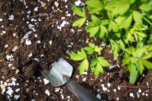 4 načina kako da iskoristite otpad iz domaćinstva u bašti
