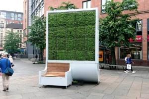 Filteri od mahovine: Gradska šuma koja ima moć čišćenja zagađenog zraka