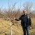 Marjan Manić diplomu učitelja zamenio uzgojem šipurka