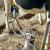 Nezadovoljni proizvođači ispred ministarstva poljoprivrede zahtevaju veće otkupne cene