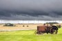 Hoće li kiše isprati kvalitetu američke pšenice?