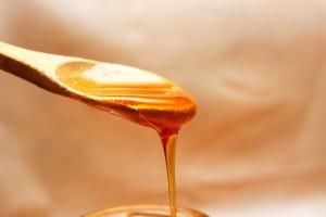 Proglašeni šampioni kvaliteta meda