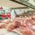 Uvozimo meso lošijeg kvaliteta dok domaća proizvodnja propada!