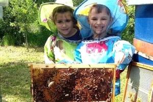 Mia i Filip zasigurno su najmlađi pčelari u regiji, na prvom vrcanju meda bili su kada im je bilo samo 3 godine