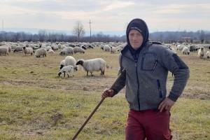 Život ovčara je pun iskušenja, ali lijep