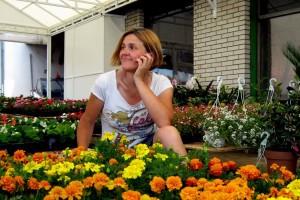 Kragujevac: Pola miliona saksija cveća godišnje