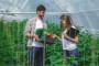 Za uspjeh poljoprivrede nužna je promjena generacija