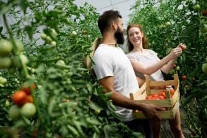 Garantni fond za startap u poljoprivredi sledeće godine