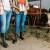 Mladi stočari osnovali zadrugu za bolji plasman mleka