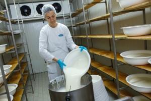 Krenuli s mljekarom od 30 kvadrata, a danas imaju preko 100 zaposlenih