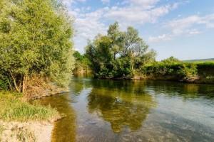 Pomor ribe na Mostarskom blatu?