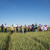 RWA Hrvatska: Sofru je zaslužila titulu vladarice naših polja
