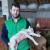 Ovčarstvo za mlade poljoprivrednike isplativo uz podršku države