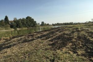 Ponjavica i Carska bara: Paljenje njiva ponovo izazvalo požar