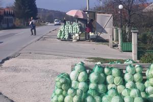 Slovenci iz srca Bosne: Kupus posadimo na rizik, niti znamo da li će biti dobar, ni da ćemo ga uspjeti prodati