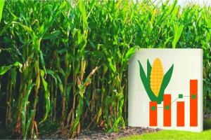Proizvodni rezultati KWS kukuruza 2017/2018 s preko 100 pokusnih lokacija