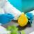 Jagode, spanać i kelj imaju najviše ostataka pesticida