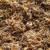 Jedan hektar nevena daje do 600 kg sušenog - plasman siguran, a cijena?