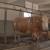 Okončan projekt osposobljavanja veterinarskog instituta