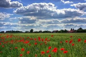 Promenjivo vreme - smena sunca i oblaka