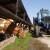 Elektrana iz Donjeg Žabra koristi višak proizvodnje u stočarstvu i ratarstvu