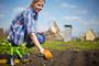 Održivi pravci u poljoprivredi