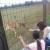 Krenuli s četiri košute i jednim jelenom, danas se na OPG-u Kordi šepuri stotinjak lopatara