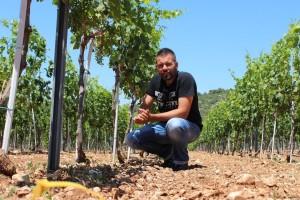 Vrhunski babić i ekološko maslinovo ulje Galjin Dvor zaokružuje ruralnim turizmom