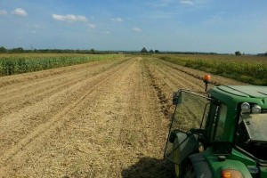 Grah i mahune s OPG-a Ratković: Poljoprivredu morate voljeti i ne očekivati veliku zaradu