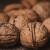 Pre odlaganja oraha u hladnjaču, plodove dobro očistiti i osušiti