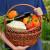 Potrebno ojačati konkurentnost organskih proizvoda u Srbiji