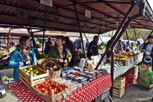 Konkurs APV za organske proizvođače
