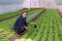 Dokazano - moguća kontrola korova bez herbicida!