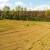 Isplativost poljoprivrede u Srbiji: Na istoku ništa novo