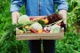 Proizvodnjom organske hrane do 8.000 radnih mjesta
