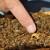 Otkriveno da pčelinji otrov uništava ćelije raka dojke