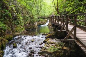 Poliranje bisera Gorskog kotara - kanjon Kamačnik dobiva turističko-edukativnu stazu