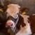 Sedam zanimljivih činjenica o kravama