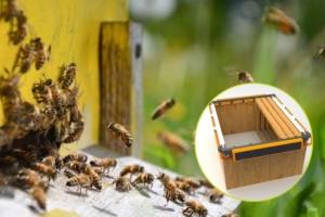 """Prva """"pametna košnica"""" prati težinu meda i jača pčelinji fond"""