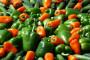 Cene povrća biće više od 25% do 40%