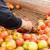Treba stimulisati građane da sami proizvode hranu