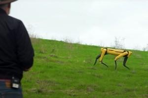 Robotski pas: Nadgleda usjeve i čuva ovce?
