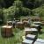 Srbin u Nemačkoj bavi se organskim pčelarstvom: Moguća selidba košnica?